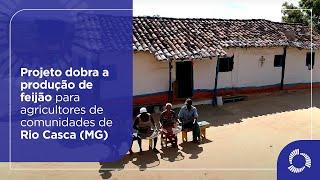 Projeto dobra a produção de feijão para agricultores de comunidades de Rio Casca (MG)