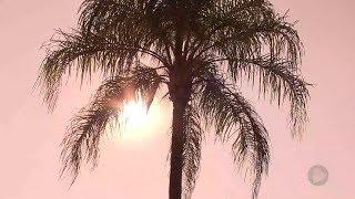 Verão: janeiro já é o mais quente dos últimos quatro anos em Bauru