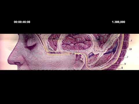 08 ᐁ DAMAGED SPEAKERS ᐁ MESS2 + NAGA NEXUS 6 видео