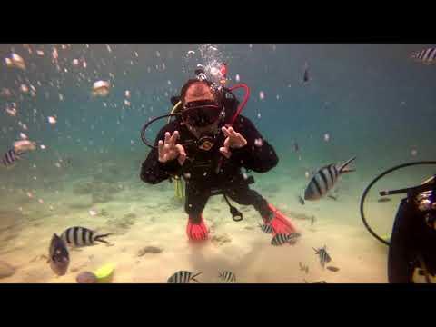 Scuba Diving Tioman Sept 2018 : Ir Sofian_Búvárkodás