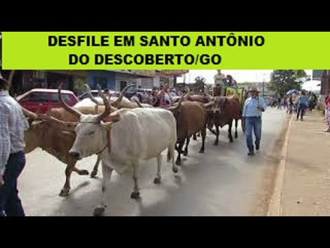 Desfile de Carros de Boi de Santo Antônio do Descoberto - GO