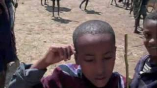 Selling Cattle In Ethiopia