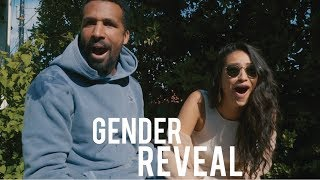 Do NOT Try This Gender Reveal at Home | Shay Mitchell