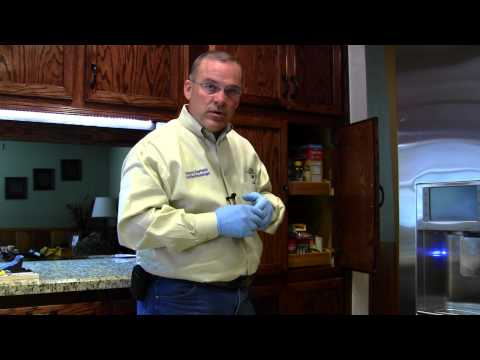 pest control - Steve Durham from EnviroCon Termite & Pests discusses regular home pests control treatments in the kitchen. We look at pests around the sink like ants and co...