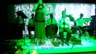 Fingo Müzik - Canlı Orkestra Grubu - Profesyonel Ses ve Işık Sistemleri