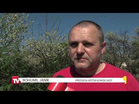 TVS: Zpravodajství Uherské Hradiště 18.4.2016