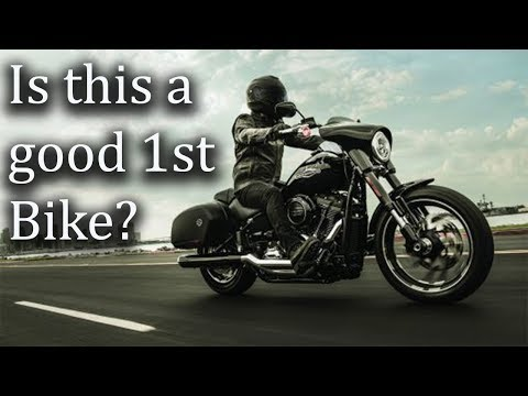 Why you should NOT buy a Harley Davidson  for your first motorcycle