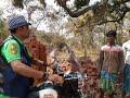 Man rescuing snake Venomous(Common krait) snake rescue team Panchet dam(N G O) 9333320555