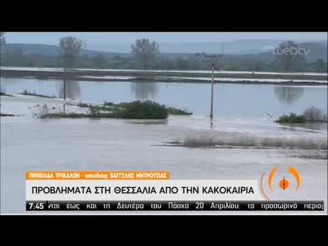Προβλήματα από την κακοκαιρία στη Θεσσαλία | 07/04/2020 | ΕΡΤ