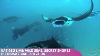 NGL Wild Seas