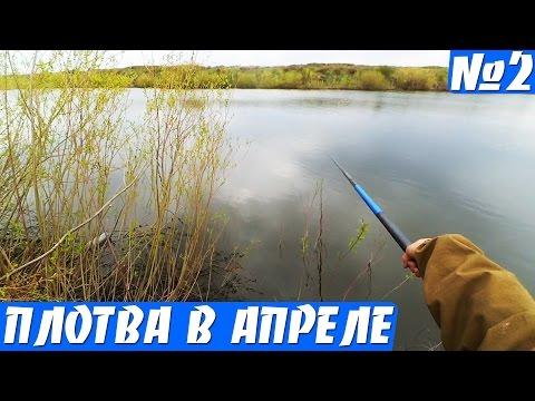ловля плотвы в апреле на поплавочную удочку на реке