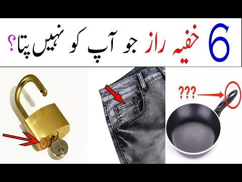 6 Things You Should Need To Know  Urdu||hindi Malomati Point