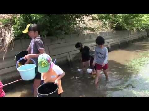 種子島の学校活動:茎南小学校「ふな汲み」ダイジェスト