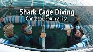 Kleinbaai South Africa  City pictures : Shark Cage Diving - Gansbaai, South Africa