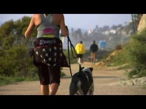 San Clemente Inn Resort, CA - Profile Video