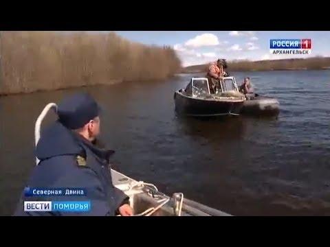 На браконьеров в Архангельской области возбуждено 14 уголовных дел