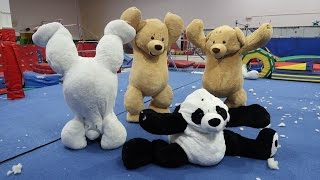 GYMNASTICS IN GIANT TEDDY BEARS!