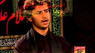 Aey Ghareeb Ul Watan Zinda Hai, Zeeshan Haider 2013 14