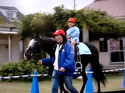 明石ケーブルTV・・二見幼稚園乗馬体験