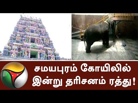 Darshan Cancelled At Samayapuram Temple Today | #Trichy #Elephant