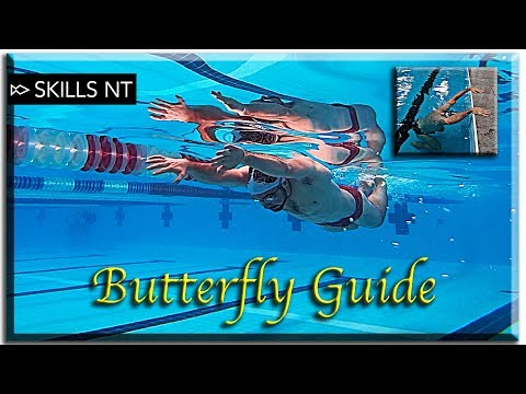Improve Your Butterfly Swimming (5 Stages) Technique For Beginners