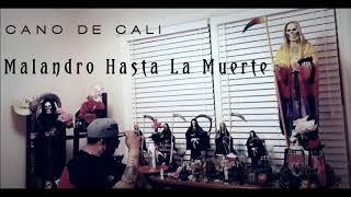 Cano De Cali Malandro Hasta La Muerte Malandro De Guanajuato