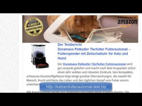 Katzenfutterautomat Test Duramaxx Petbutler Tierfutter Futterautomat