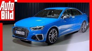 Audi S4 (2019): Diesel - Neuvorstellung - Sportwagen - Infos by Auto Bild