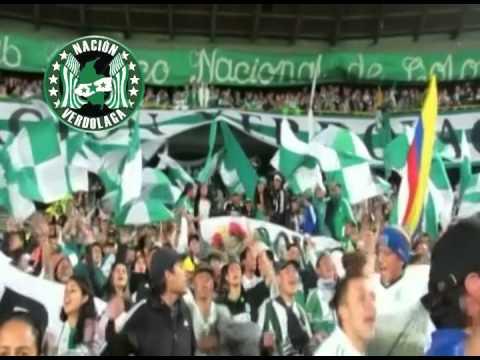 Un solo sentimiento, el sentimiento nacional - Nación Verdolaga - Atlético Nacional
