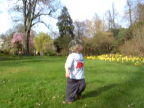 Savill Garden 2
