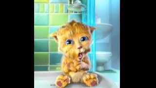 Talking Ginger enojado porque no se quiere bañar