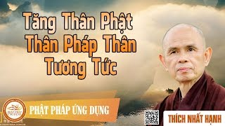 Tăng Thân Phật Thân Pháp Thân Tương Tức - Thiền Sư Thích Nhất Hạnh