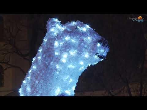 Świąteczne Suwałki. Lampki na choince, niedźwiedziach, ratuszu