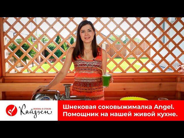 Шнековая соковыжималка Angel. Четвертый помощник на живой кухне семьи Евгения Попова