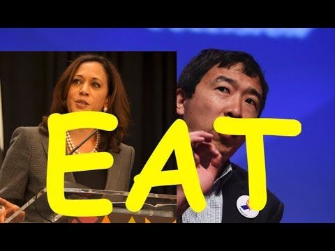 Andrew Yang DOUBLE @ Kamala Harris via Blanket Conquest Ad Campaign Online