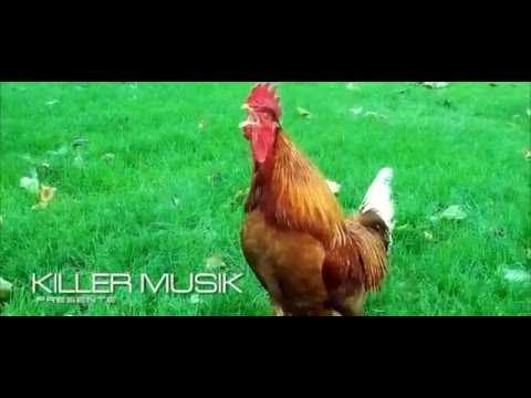 Dj Manu Killer - La Danse Du Coq ( Clip Officiel )
