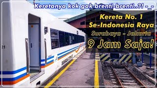 Video KERETA NO. 1 SE-INDONESIA, Kok Gak Berhenti-berhenti?! Trip Naik KA Argo Bromo Anggrek MP3, 3GP, MP4, WEBM, AVI, FLV September 2018