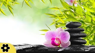 Video Zen Music, Relaxing Music, Calming Music, Stress Relief Music, Peaceful Music, Relax, ✿3256C MP3, 3GP, MP4, WEBM, AVI, FLV Desember 2018