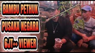 Video BAMBU PETHUK,PUSAKA NEGARA MP3, 3GP, MP4, WEBM, AVI, FLV Agustus 2019