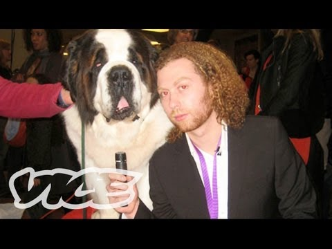 Westminster Dog Show... On Acid!