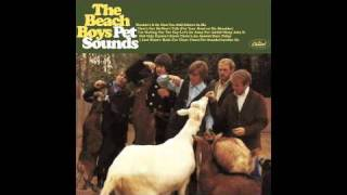 """Reflections on a Half-Century of """"Pet Sounds"""""""