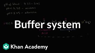 Video Introduction to buffers | Water, acids, and bases | Biology | Khan Academy MP3, 3GP, MP4, WEBM, AVI, FLV September 2018
