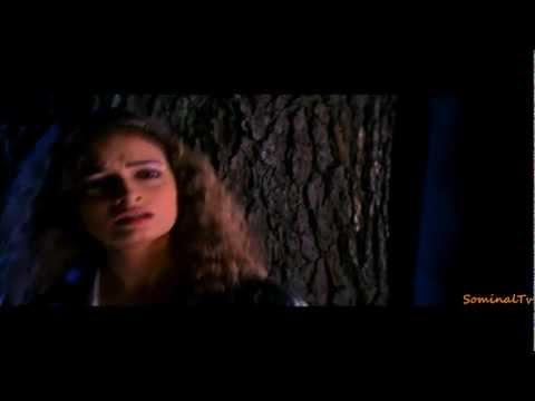 Video Tum Shayad Bhule - Naam Gum Jayega (2005) *HD* Music Videos download in MP3, 3GP, MP4, WEBM, AVI, FLV January 2017