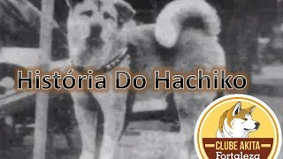 A Historia Do Hachiko