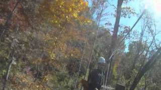 Horse Cave (KY) United States  City new picture : Zip Line Video from Mammoth Cave Adventures in Cave City, KY