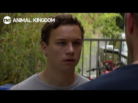 Animal Kingdom: Meet The Family [RECAP] | TNT