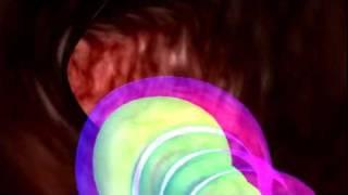 Video clip  Tinh trùng xâm nhập buồng tử cung và gặp trứng
