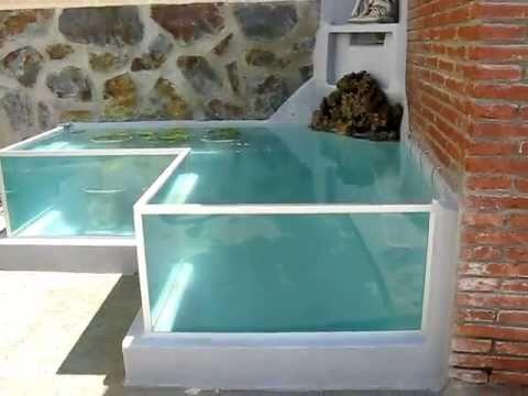Pecera para goldfish videos videos relacionados con for Estanque tortugas casero