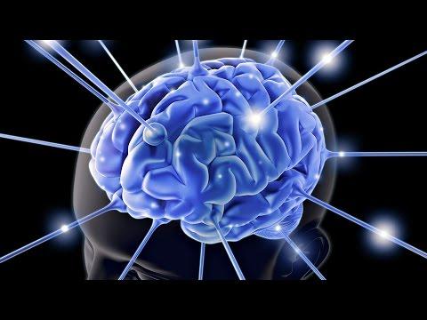 Как Улучшить Память и Внимание? Средство для улучшения работы мозга у взрослых и детей: Омега-3 ПНЖК