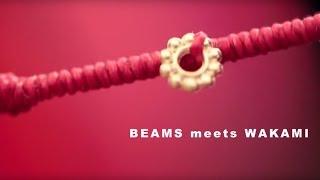 BEAMS meets WAKAMI